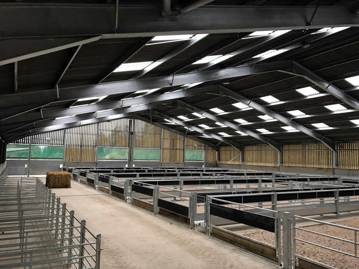 Example of Sheep Shed